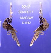 Scarlet Macaw Earrings, #857